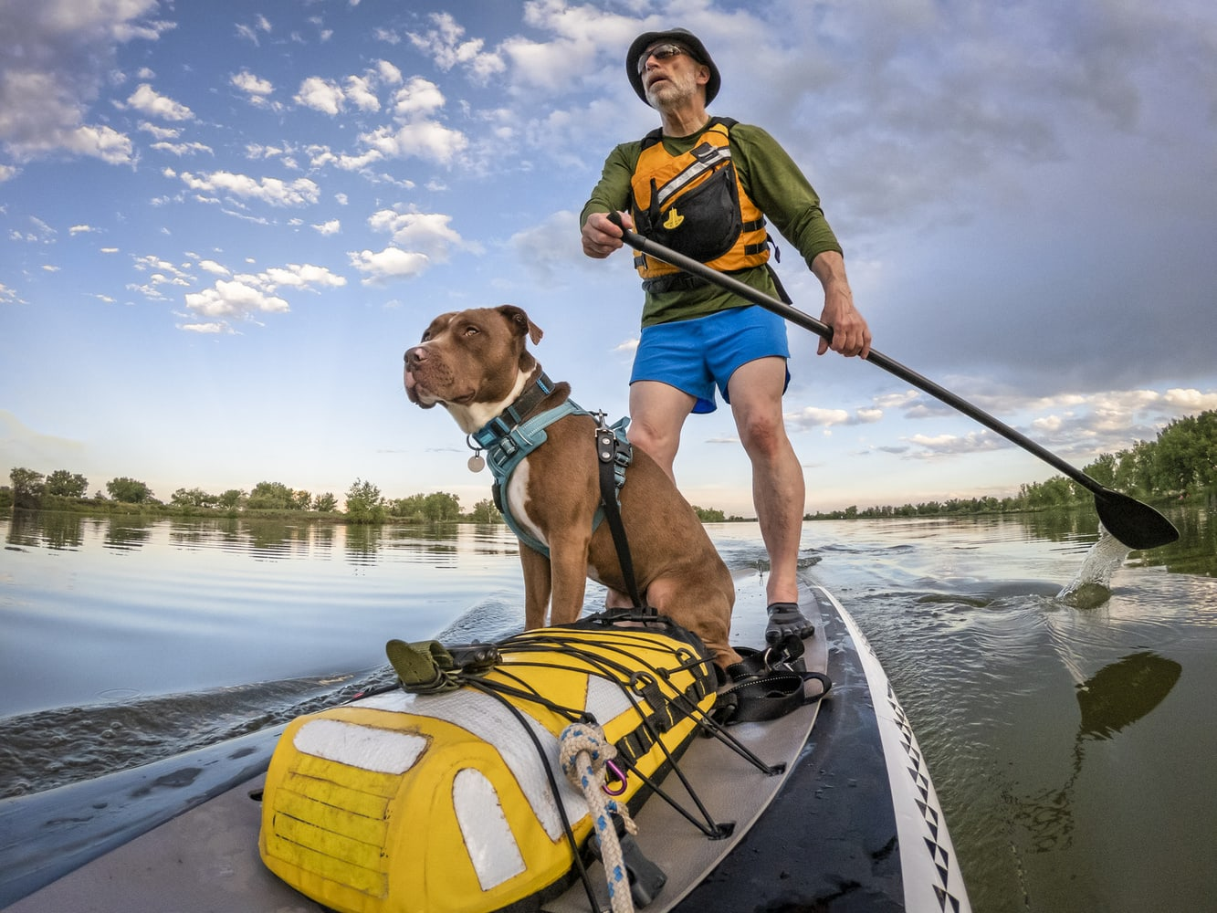 Where To SUP with Your Pup