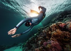 Best Wetsuits for Diving In Saltwater and Freshwater: 2020 Buyer's Guide