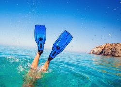 Best Scuba Diving Fins for Amateur and Seasoned Divers: Buyer's Guide & Product Reviews