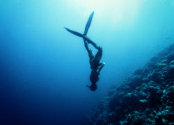 How to Freedive Deeper