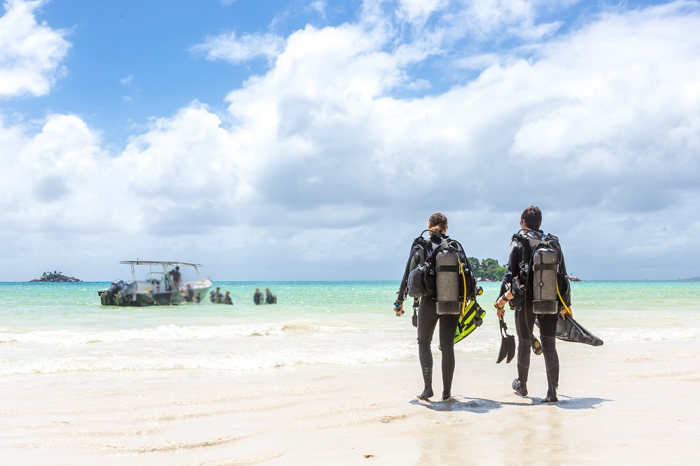Divers Walking on Beach